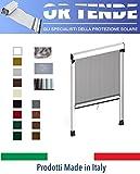ORTENDE - Zanzariera Verticale in Alluminio a Molla con Bottoncini Antivento per Finestre,...