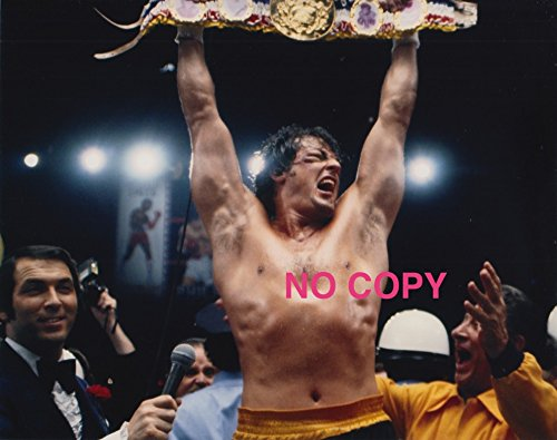 Movie Images Rocky Sylvester Stallone, Foto 8x 10, # 4376