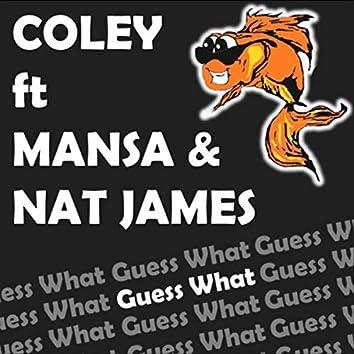 Guess What (feat. Mansa & Nat James)