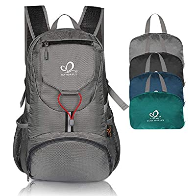 WATERFLY Packable Backpack Daypack for Men Women 20L Lightweight Travel Hiking Daypack (Gray)