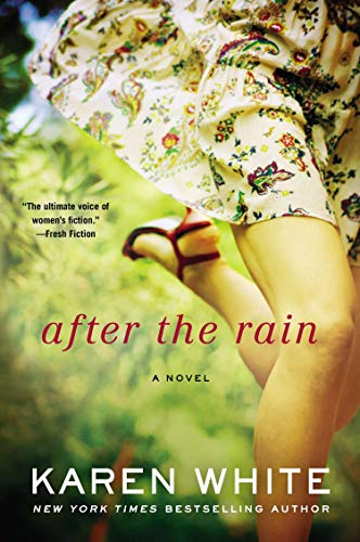 After the Rain (A Falling Home Novel)