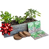 Culinary Indoor Herb Garden Kit with Reclaimed Barnwood Style Planter - Aged Brown - Grow Cooking...