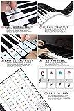 Immagine 1 sanlinkee adesivi per pianoforte 37