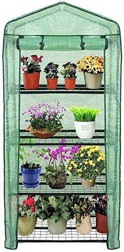 Mini Walk-in Greenhouse 3 Tier 6 Shelves with PE Cover and Roll-Up Zipper Door Grow Seeds /& Seedlings Tend Potted Plants Waterproof Cloche Portable Greenhouse Tent-55.9L x 28.3W x 75.59H Inches