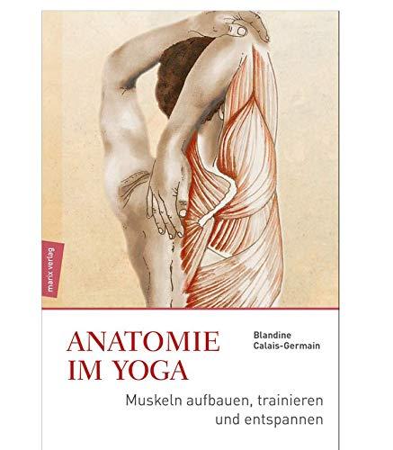 Anatomie im Yoga: Muskeln aufbauen, trainieren und entspannen