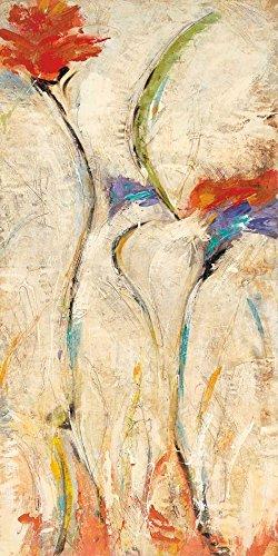 Feeling at home IMPRESION-sur-Papier-Flores-II-Santos-NancyVillarreal-Floral-Affiche-roulée-Fine-Art- pour-cadre-Poster-pour-décoration-murale-dimensions-80_X_39_cm