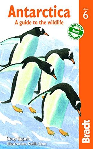 Antarctica Travel Guides
