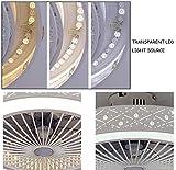 Zoom IMG-1 behwu fan ceiling light 36w