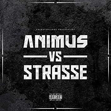Animus VS Strasse
