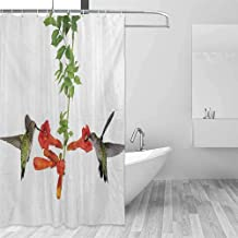 Modern Shower Curtain Hummingbirds Two Hummingbirds Sipping Nectar from a Trumpet Vine Blossoms Summertime Easy Installation Red Black Green,W36 xL72