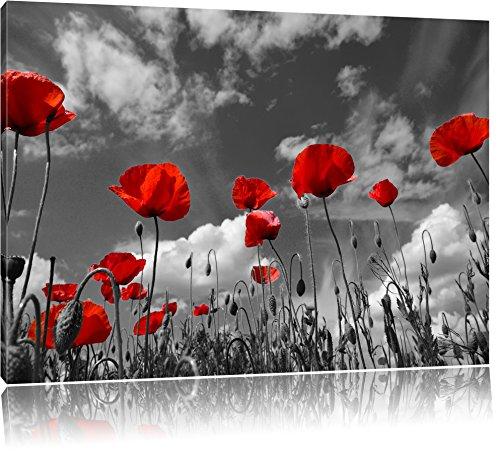 Pixxprint Wiese mit Blumen als Leinwandbild | Größe: 120x80 cm | Wandbild | Kunstdruck | fertig bespannt
