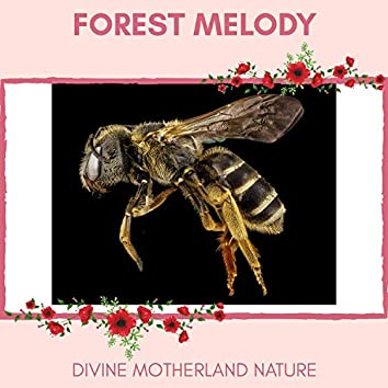 Forest Melody - Divine MotherLand Nature