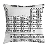 Ambesonne Periodic Table Throw Pillow Cushion Cover, Monochrome Simple Science Chemistry Elements for Students Class Image, Decorative Square Accent Pillow Case, 24' X 24', Black and White