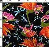 Blume, Nacht, Frösche, Libelle, Paradiesvogel Stoffe -