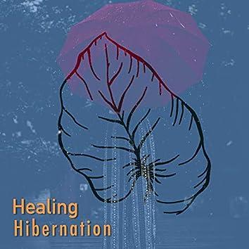 # 1 Album: Healing Hibernation
