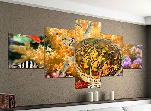 Acrylglasbilder 5 Teilig 200x100cm Schildkröte Wasser Korallen Fische Druck Acrylbild Acryl Acrylglas Bilder Bild 14F376, Acrylgröße 11:Gesamtgröße 200cmx100cm