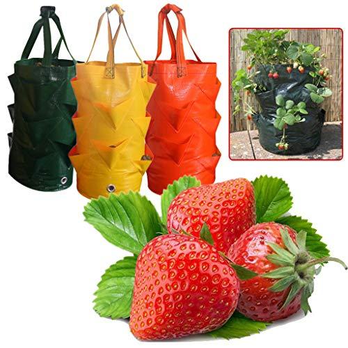 Longra Erdbeere Pflanzsack Pflanzbeutel, Pflanztasche, Multi Container Tasche wachsen Pflanzer Beutel zum Aufhängen Erdbeer-Pflanzgefäß Pflanztasche für Pflanzen von Erdbeeren Kräutern Tomaten etc