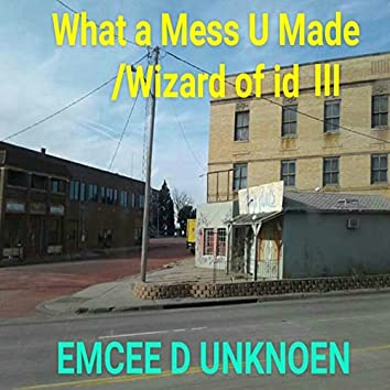 What a Mess You Made / Wizard of Id 3