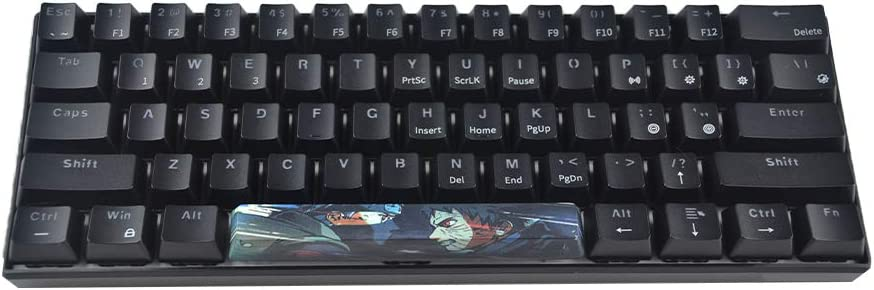 RICKONS Keycap 6.25u Space Bar for Cherry Switch Mechanical Gaming Keyboard with Key Puller (Kakashi 2)