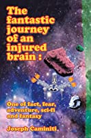 The Fantastic Journey of an Injured Brain: One of Fact, Fear, Adventure, Sci-Fi and Fantasy