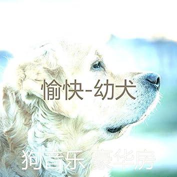 愉快-幼犬