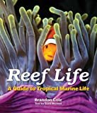 Reef Life: A Guide to Tropical Marine Life - Brandon Cole