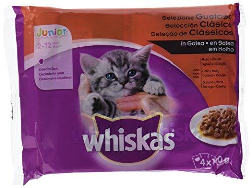 Whiskas Cibo umido per gatti Junior Selezione Carnes in gelatina, Multipack (confezione da 13 x 4 bustine x 100 g)