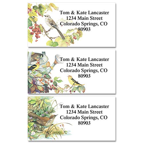 Songbirds Personalized Return Address Labels – Set of 144, Large, Self-Adhesive, Flat-Sheet Labels (6 Designs), by Colorful Images