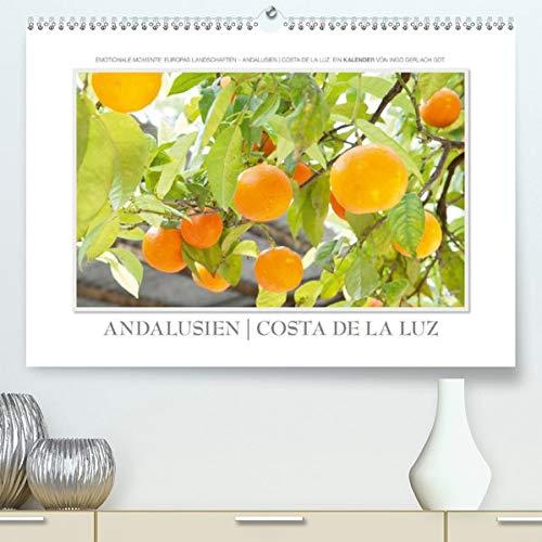 Emotionale Momente: Andalusien  Costa de la Luz(Premium, hochwertiger DIN A2 Wandkalender 2020, Kunstdruck in Hochglanz): Europas Landschaften - ... Gerlach GDT. (Monatskalender, 14 Seiten )