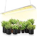 Spider Farmer LED Pflanzenlampe SF600 LED Grow Lampe Vollspektrum Grow Light Wachstumslampe für Zimmerpflanzen mit Reflektor Pflanzenleuchte Pflanzenlicht für Innen Gartenarbeit Gemüse Blume 384 LEDs