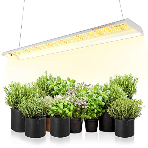 SPIDER FARMER SF-600 LED Grow Light 2x4 ft Coverage Sunlike Full Spectrum Plant Growing Lamp for Indoor Plants Hydroponics Seeding Veg Flower Energy Saving & High Efficiency Grow Lights 384 Diodes