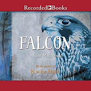 Falcon audiobook cover art