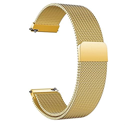 WGDPMGM Correa Reloj Strap de Acero Inoxidable Malla Inteligente Reloj de reemplazo 18 mm 20 mm 22 mm Mujeres Hombres Relojes Accesorios (Color : Gold, Size : 18mm)