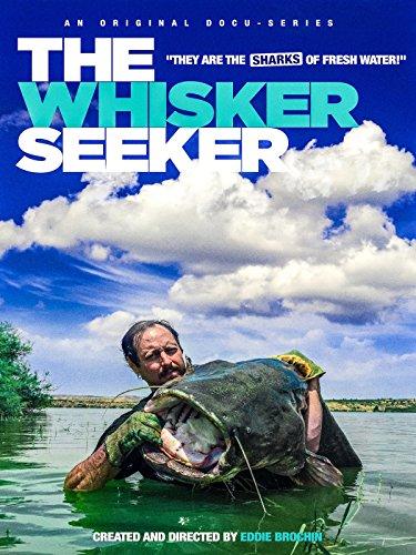 The Whisker Seeker