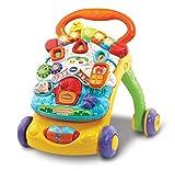 Vtech - Correpasillos Andandín 2 En 1, Diseño Mejorado, Andador Bebé Interactivo Plegable...