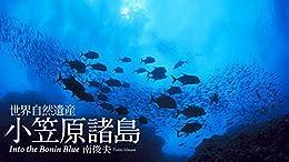 [南俊夫]の世界自然遺産 小笠原諸島: Into the Bonin Blue (Sphere Digital Books)