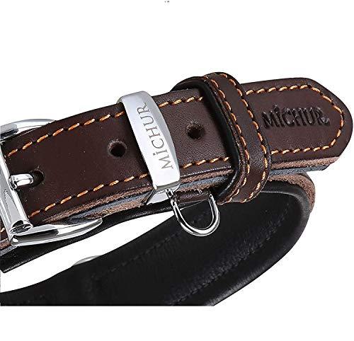MICHUR Minimo Braun Hundehalsband Leder, Lederhalsband Hund, Halsband, Braun, Leder, in verschiedenen Größen erhältlich