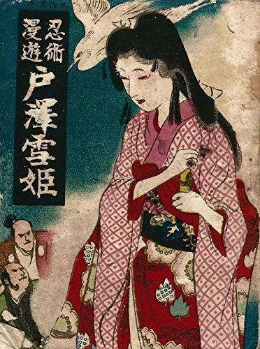 忍術漫遊 戸澤雪姫: 大正十二年の魔法少女 解説つき (山下泰平)
