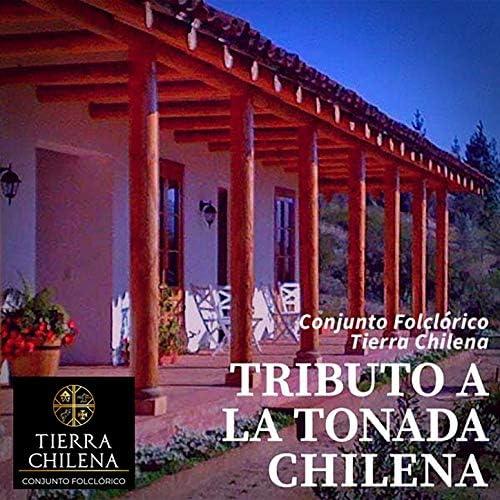 Conjunto Tierra Chilena