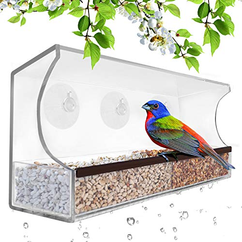 Gray Bunny GB-6851 Deluxe Clear Window Bird Feeder, Large Wild Birdfeeder with Drain Holes, Removable Tray, Super Strong Suction Cups, Transparent Viewing, Covered, High Seed Capacity, Rubber Perch