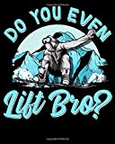 """Do You Even Lift Bro?: Do You Even Lift Bro Ski Lift Pun Snowboarders & Skiiers 2021-2022 Weekly Planner & Gratitude Journal (110 Pages, 8"""" x 10"""") ... Notes, Thankfulness Reminders & To Do Lists"""