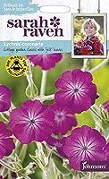 【輸入種子】 Johnsons Seeds Sarah Raven Brilliant for Bees & Butterflies Lychnis coronaria サラ・レイブン ビー&バタフライ リクニス・コロナリア ジョンソンズシード