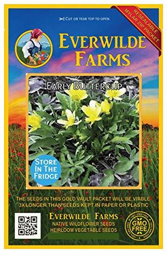 Everwilde农场 -  40颗早期毛茛属野花种子 - 金拱顶巨型种子包