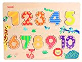 Iwood-Puzle de Madera Los Números, Multicolor (11004)