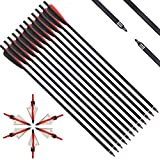 IRQ 20 Inch Crossbow Bolts and Crossbow Broadheads Set, Carbon Crossbow Arrows for Hunting and Outdoor Practice, 12 Red Arrows, 6 Broadheads(18 Pack)(Black and red)