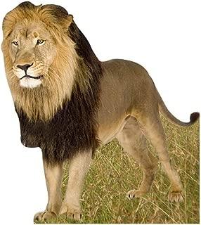 Jungle Safari Lion Cardboard Cutout Standee Standup Prop Party Supplies Decorations Decor Backdrop Background