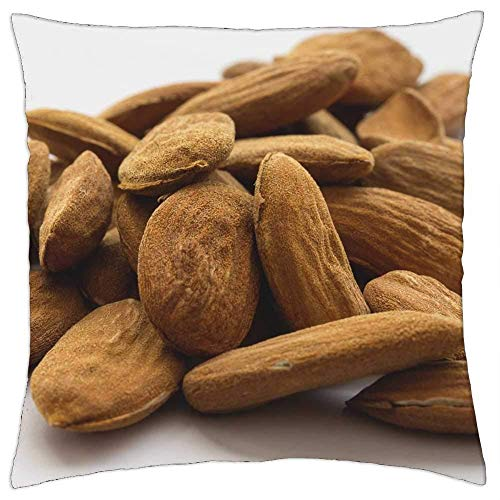 ETGeed Almond Stone Seeds Crop Food Healthy Macro 2 Throw Pillow Covers,Decorative Cushion For Sofa Couch Bed Home Decoration,18 x 18 Inch