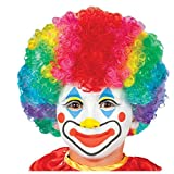 Amscan 840170 Rainbow Clown Wig - Child