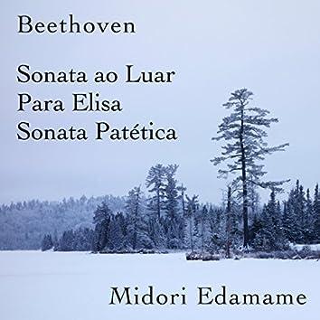 Beethoven: Sonata ao Luar / Para Elisa / Sonata Patética