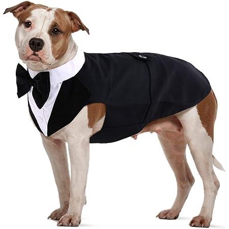 Dog Tuxedo Over the Collar Dog Wedding Dog Bandana Dog Grad